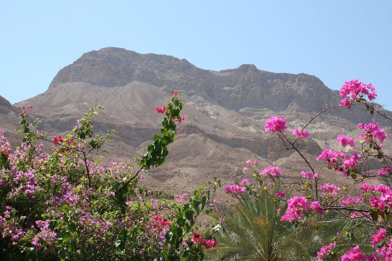 Israel trip 1075