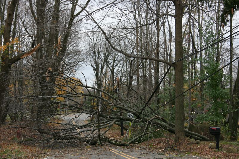 Hurricane Sandy 684