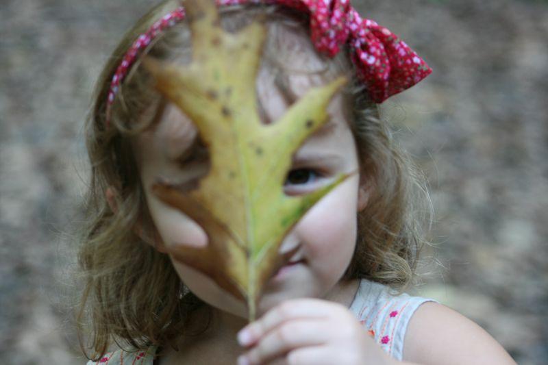 Autumn photos 031