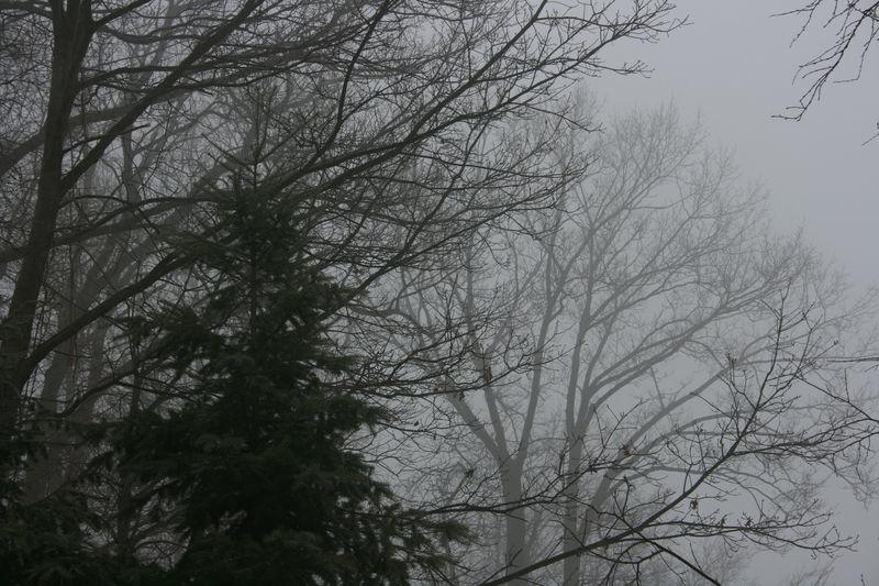 Winter 308