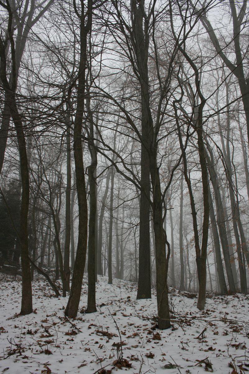 Winter 316