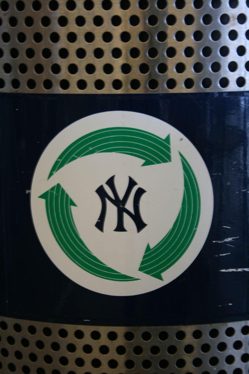 Yankees Game 071