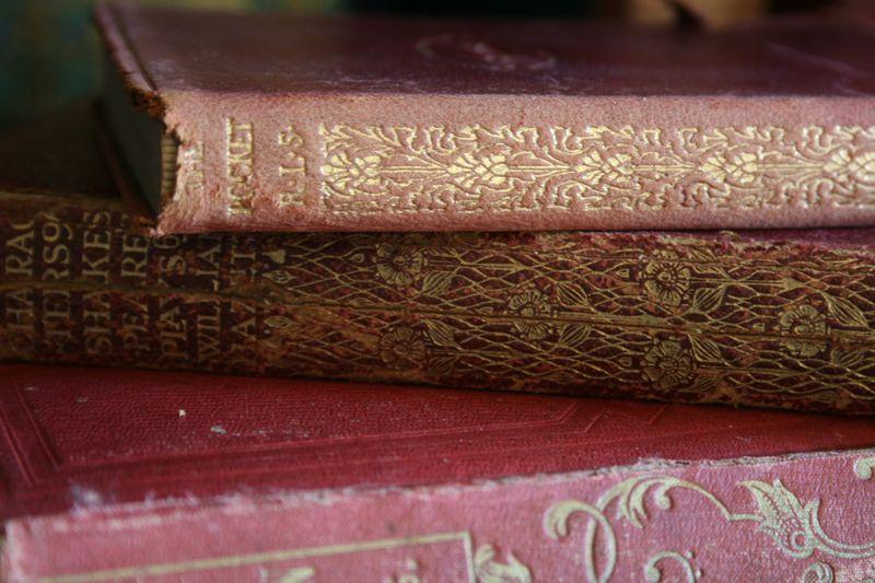 Old books 019