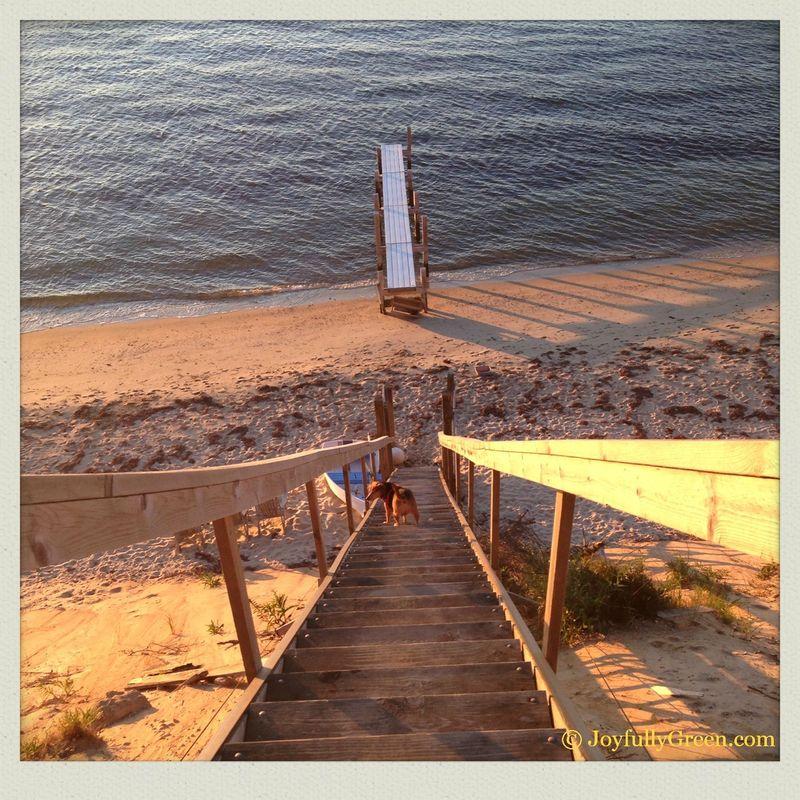 Beach stairway2