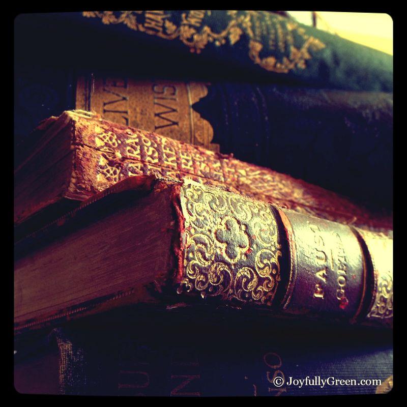 AntiqueBooks1A