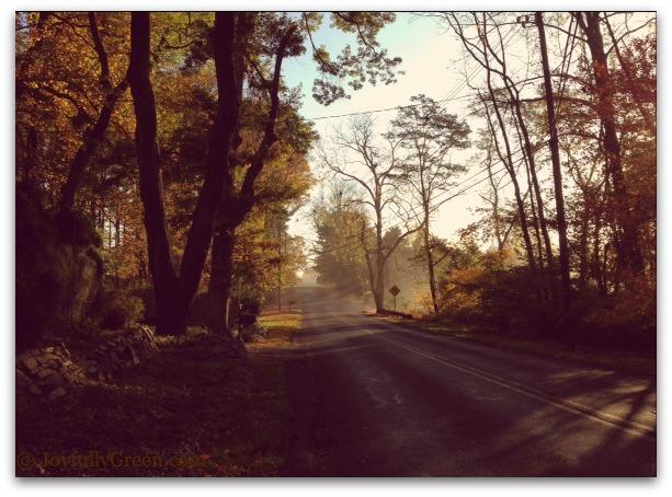 Countryroad1E
