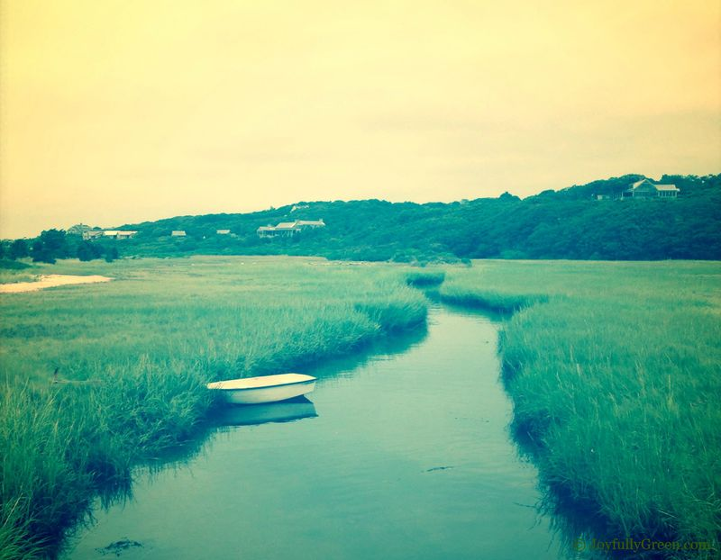 Boat at Marsh S6 (2)