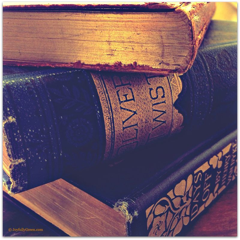 Antique Books 2a
