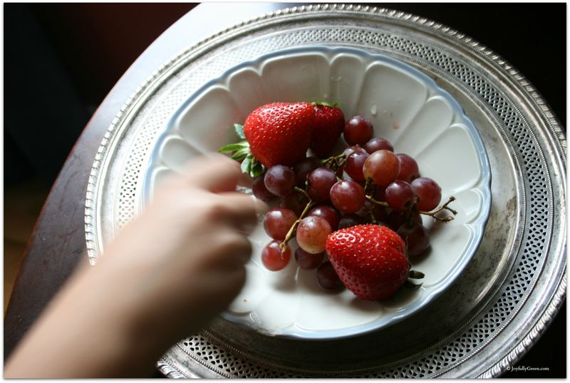 Strawberry Thief © Joyfully Green