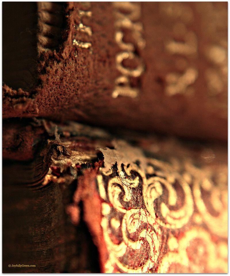 AntiqueBooks12a