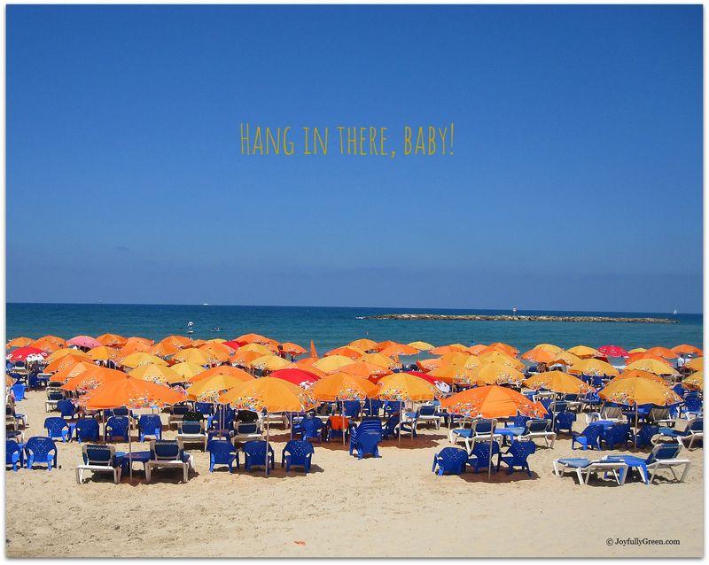 BeachUmbrellas1