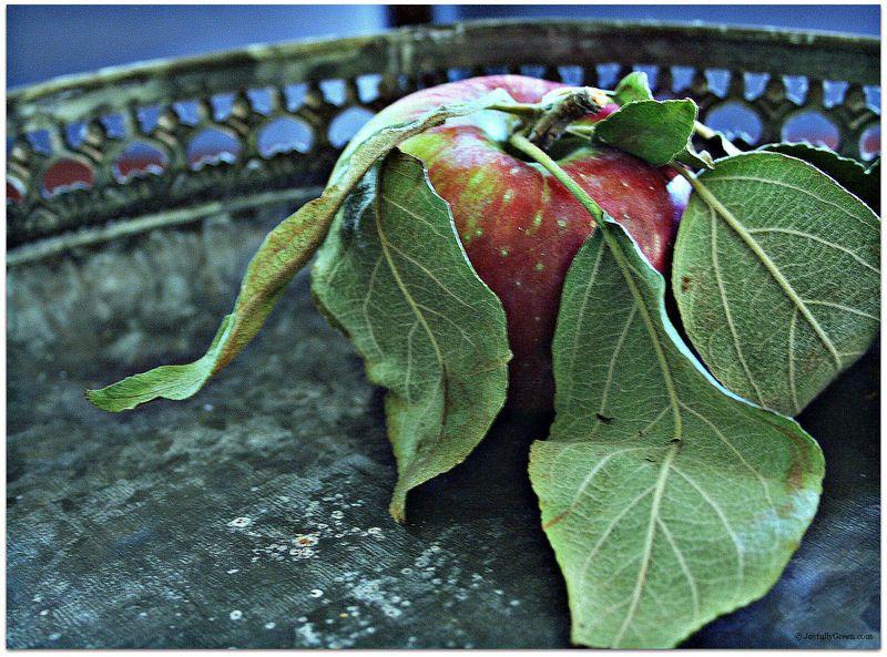 AppleOnTray