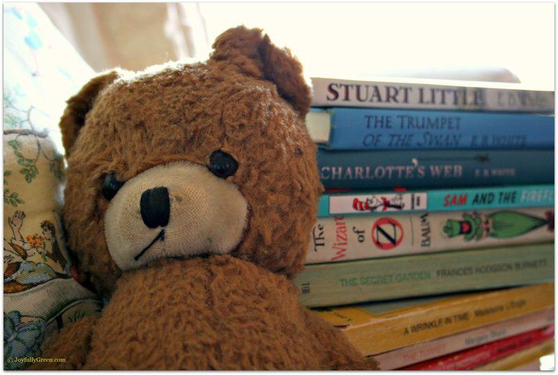 TeddyBearandBooksJGC