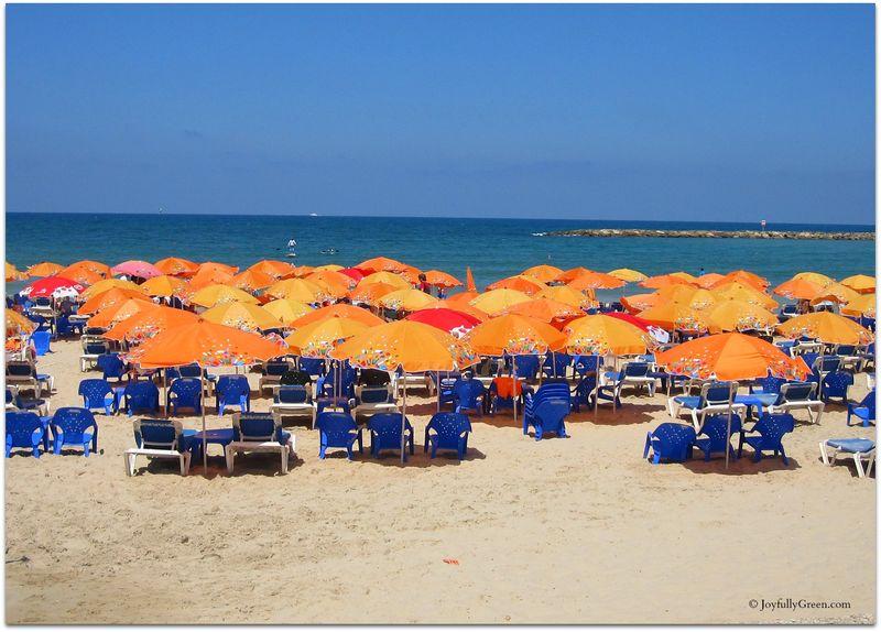Beach Chairs Joyfully Green