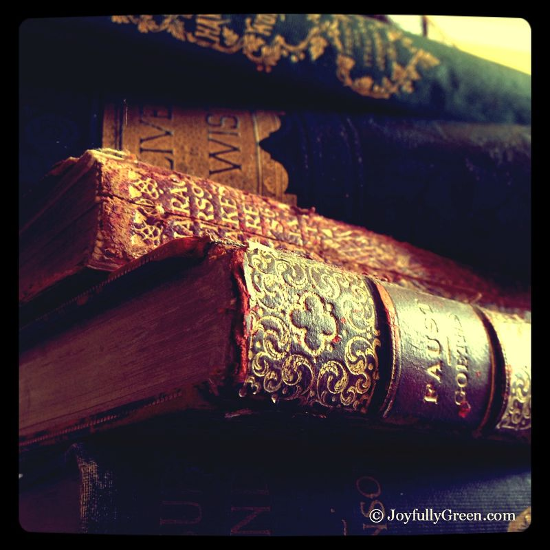 AntiqueBooks1A