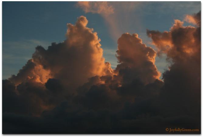 Parrish Sunset 2 © Joyfully Green