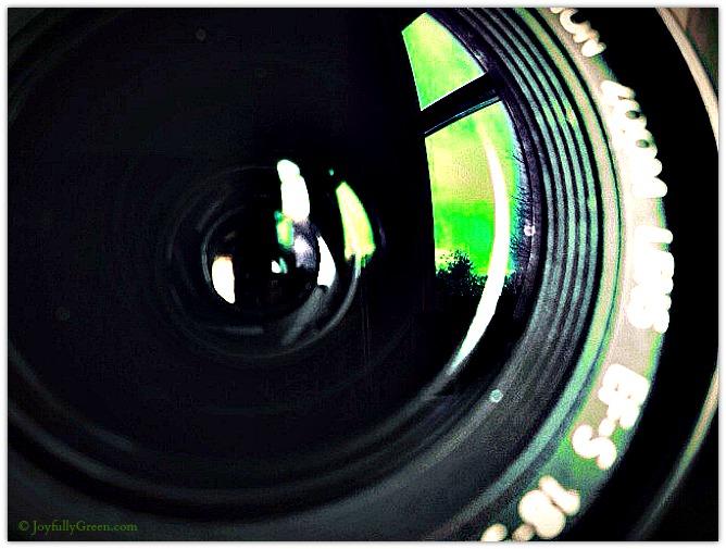 Camera Lens by Joyfully Green LLC