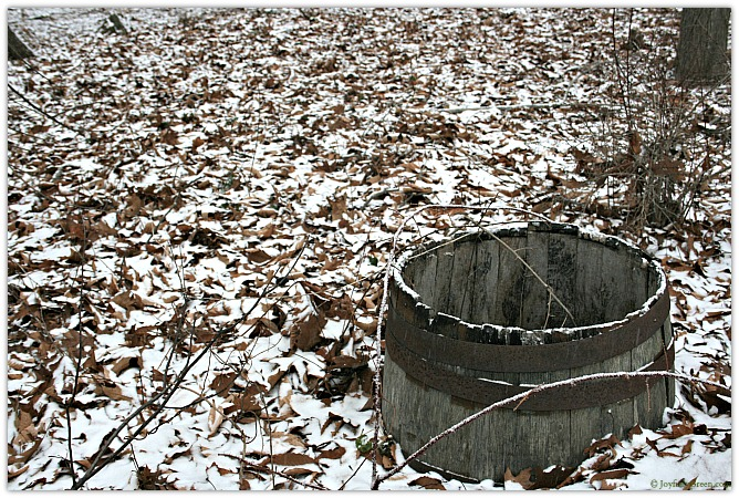 Snow Barrel Copyright Joyfully Green