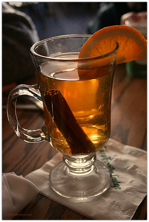 Hot Mulled Cider © Joyfully Green