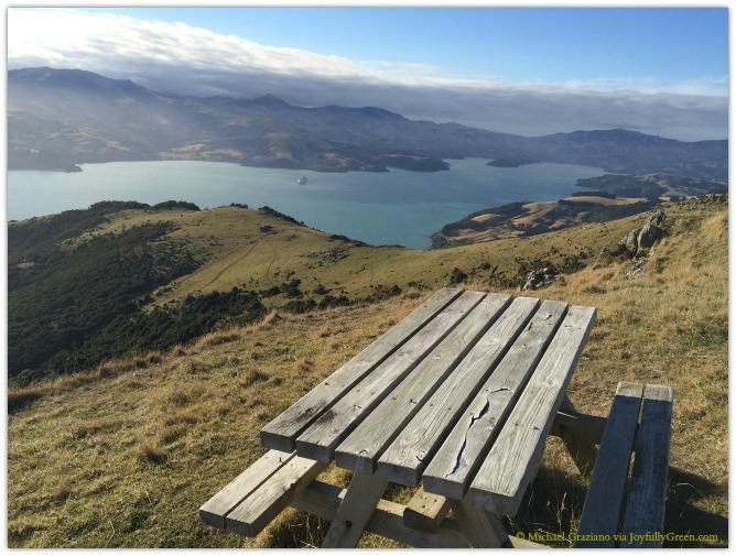 © Michael Graziano-New Zealand View 3