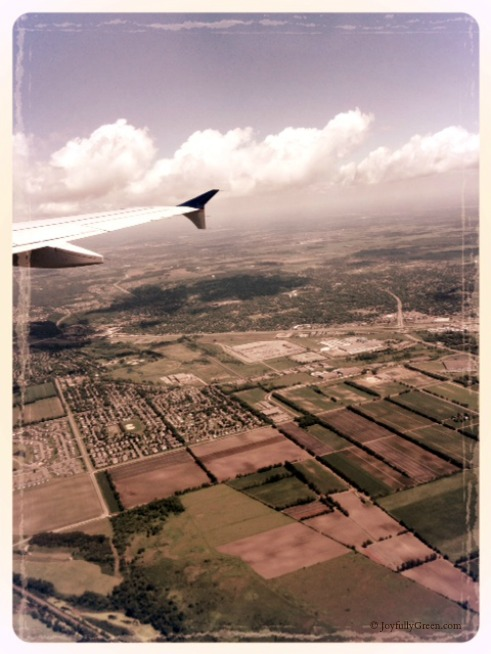 Plane View 2 © Joyfully Green LLC
