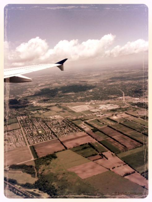 Plane View 2 © Joyfully Green LLC