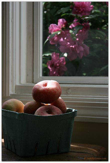 Peaches and Roses © Joyfully Green LLC