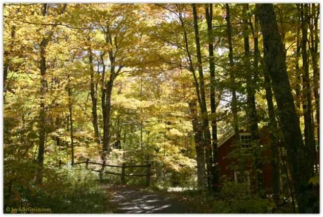 Catskills House 4288 © Joyfully Green LLC
