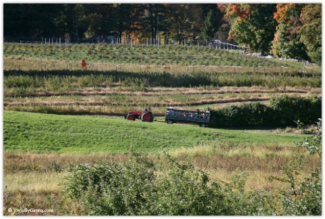Catskills Tractor 3970 © Joyfully Green LLC