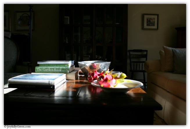 Dragon Fruit Study IMG_7384 © Joyfully Green LLC