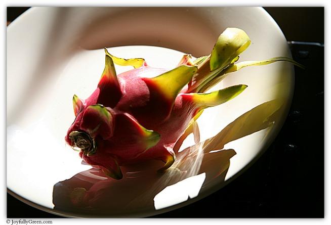Dragon Fruit 2 IMG_7339 © Joyfully Green LLC