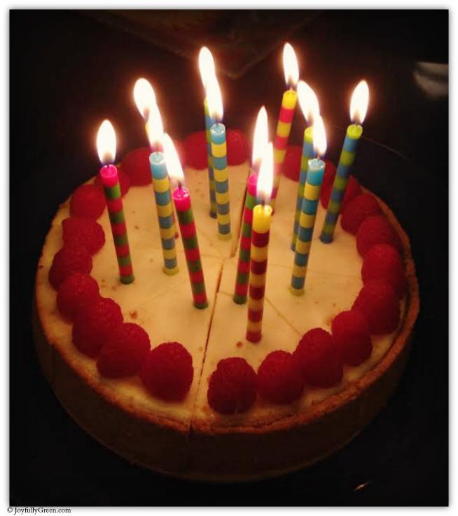 Cake 12 © Joyfully Green LLC