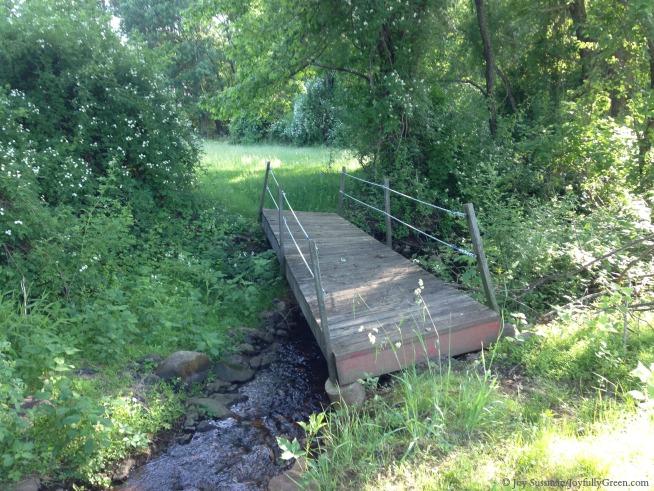 BridgeIMG_0104 © Joy Sussman - Joyfully Green LLC