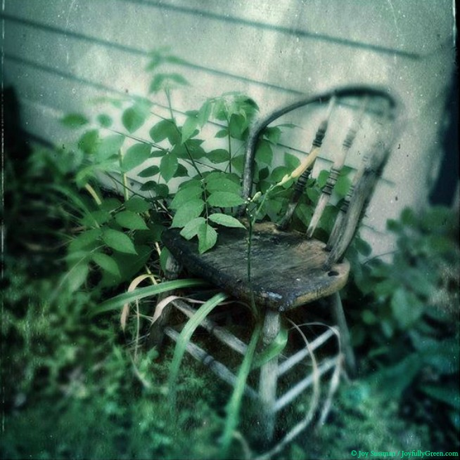 Chair in the Middle of Nowhere © Joy Sussman Joyfully Green LLC