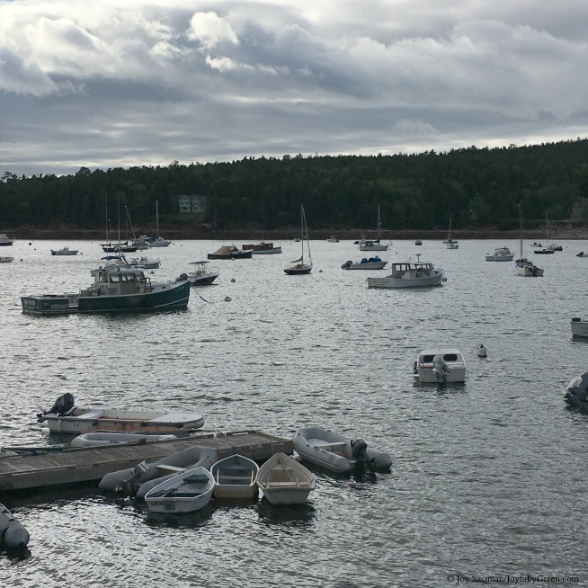 Maine Harbor © Joy Sussman Joyfully Green LLC