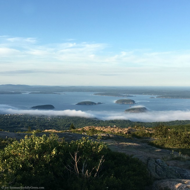 Maine Cadillac Mountain © Joy Sussman Joyfully Green LLC