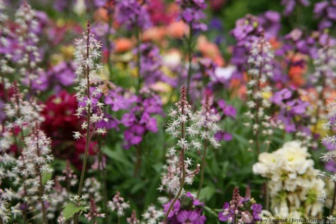 Garden at Mansion © Joy Sussman - Joyfully Green LLC