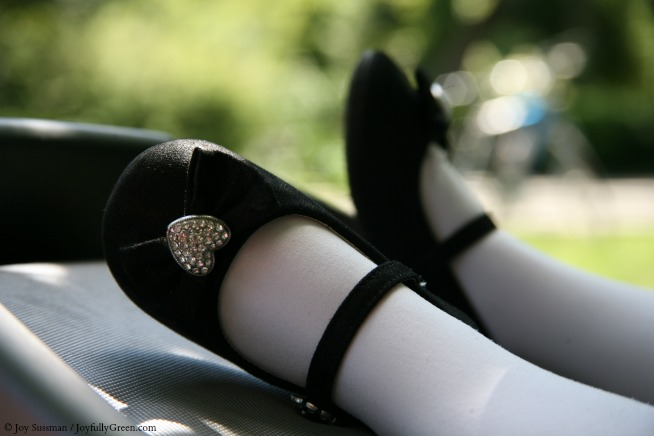 Party Shoes © Joy Sussman - Joyfully Green LLC