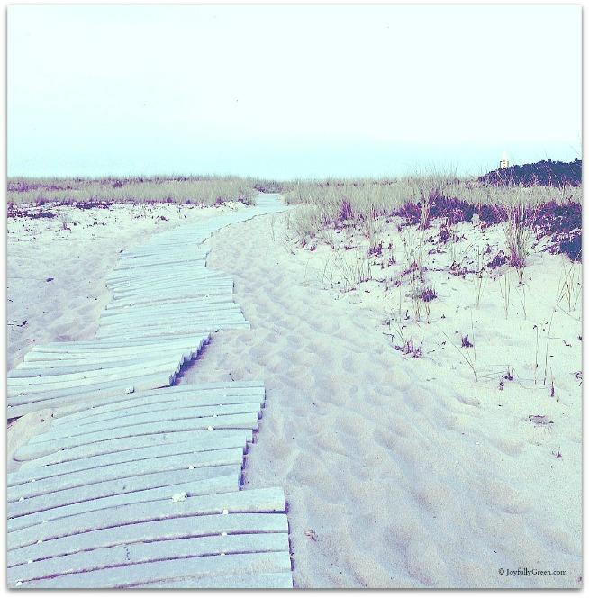 Dunes © Joyfully Green