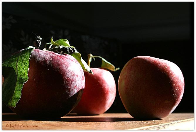 Autumn Apples © Joyfully Green