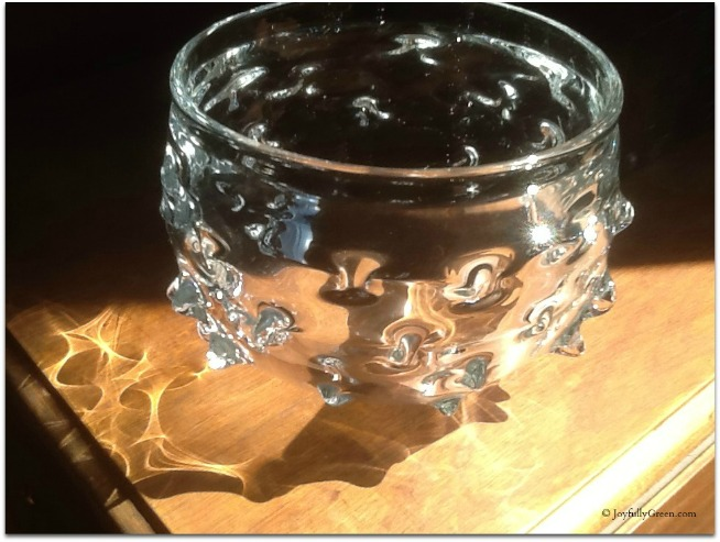 Glass Bowl 3 © Joyfully Green LLC