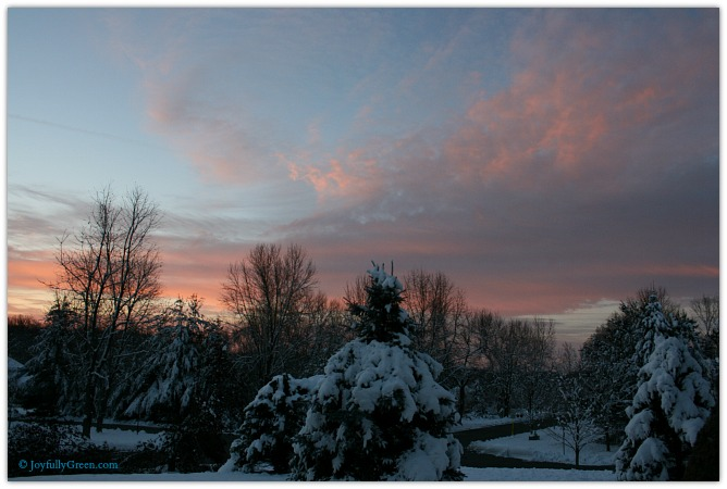 Winter Sunrise by Joyfully Green