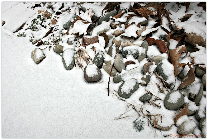 Snowy Rocks Copyright Joyfully Green