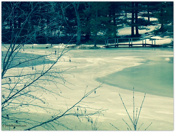 Great Barrington Pond Copyright Joyfully Green LLC