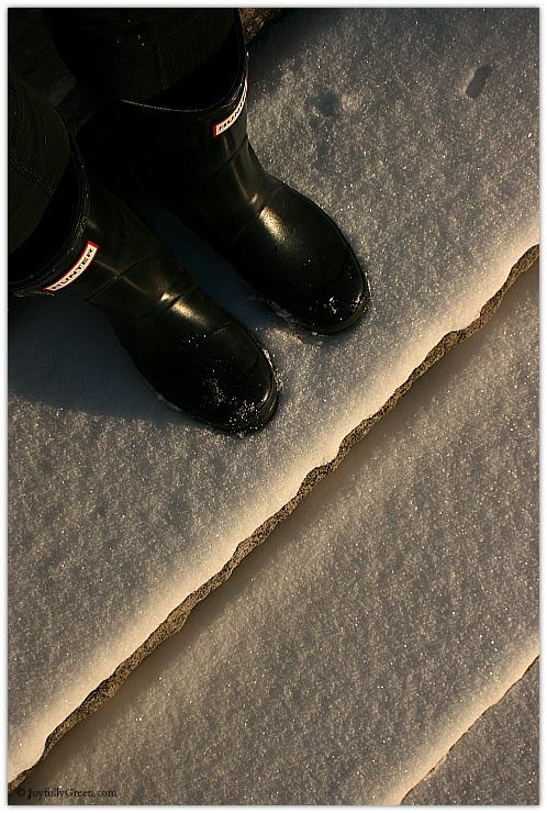 Snow Boots Copyright Joyfully Green LLC