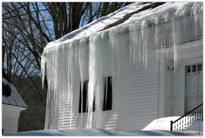 Icicles © Joyfully Green LLC