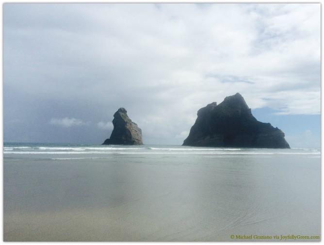 © Michael Graziano-New Zealand coast
