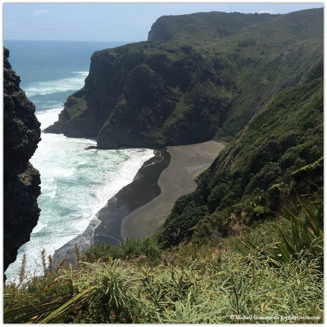© Michael Graziano-NZ-Kare Kare