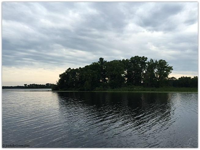 Minnesota Lake 2 © Joyfully Green LLC
