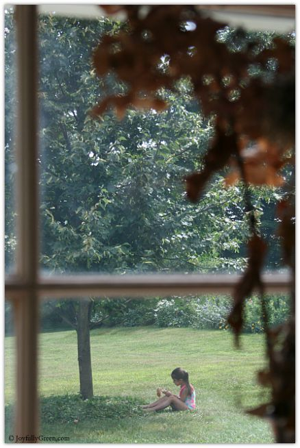 Through the Window © Joyfully Green LLC